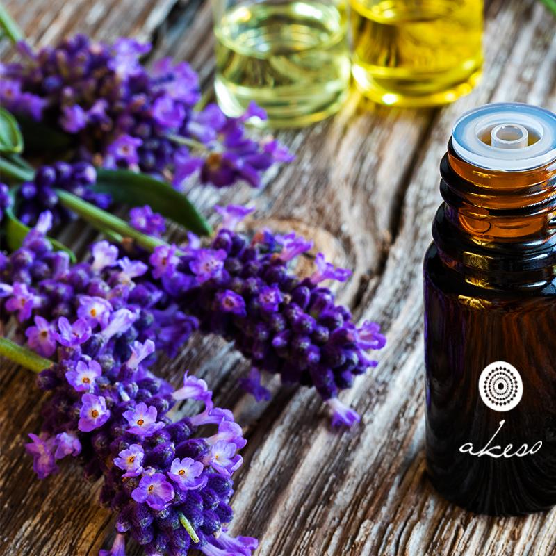λεβάντα lavender